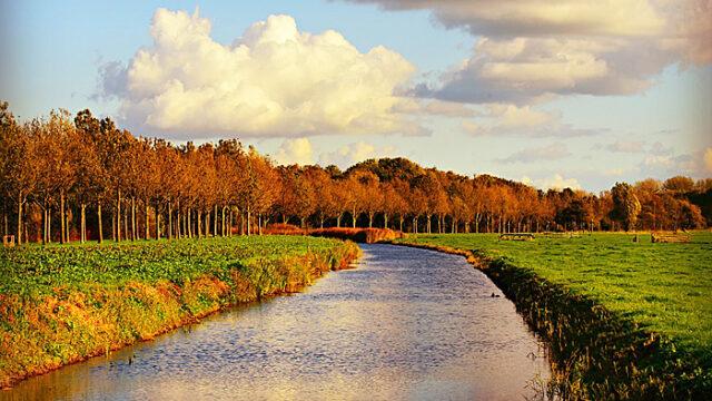 運河と普通の川の違いって何?日本で見られるおすすめ運河は?